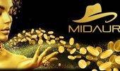 Midaur cover