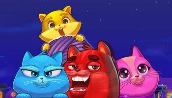 Copy Cats kansi