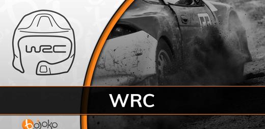 WRC Viro: Rallin voittaja