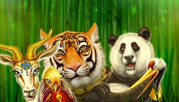 Chinese Wilds cover