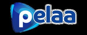 Click to go to Pelaa casino