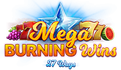 Mega Burning Wins: 27 ways logo