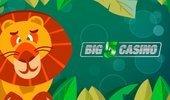 Big5Casino cover