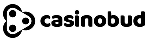Kasino CasinoBud logo