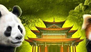 Panda's Run kansi