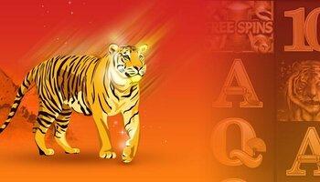 Casino Golden Tiger Casino  cover